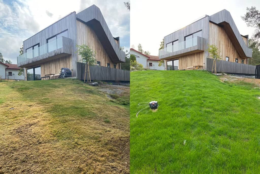 Before and after lawn restoration service in Stockholm