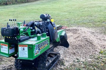 Stump removal with stump grinding service Stockholm Uppsala